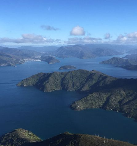 Marlborough Sounds View From A Helicopter